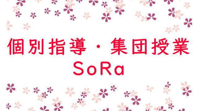 個別指導・集団授業 SoRa